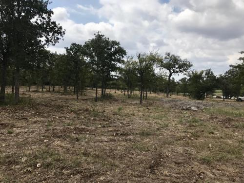 Land Clearing Services TX